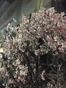 小さな花弁 桜