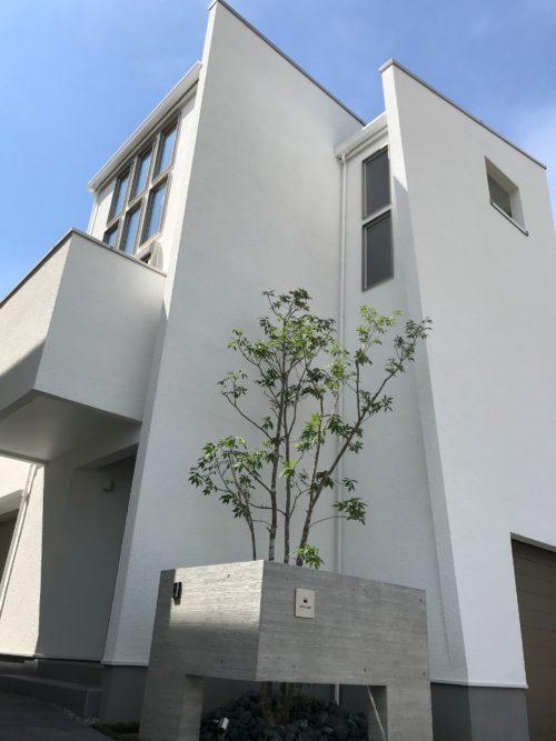 三井ホーム モデルハウス デザイナーズ
