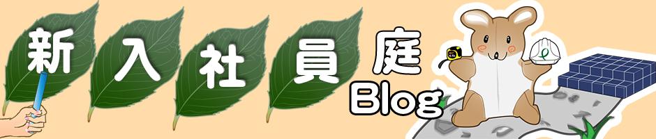 新入社員庭ブログ