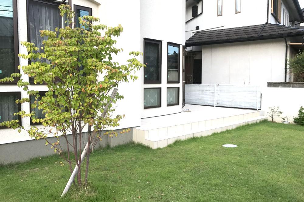 前庭はタイル貼りのテラスとシンボルツリーのヤマボウシ
