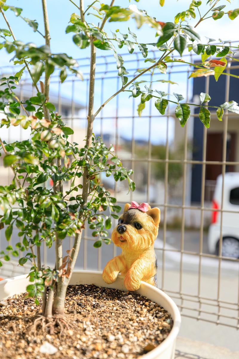 植木鉢にぶら下がる犬の飾り物