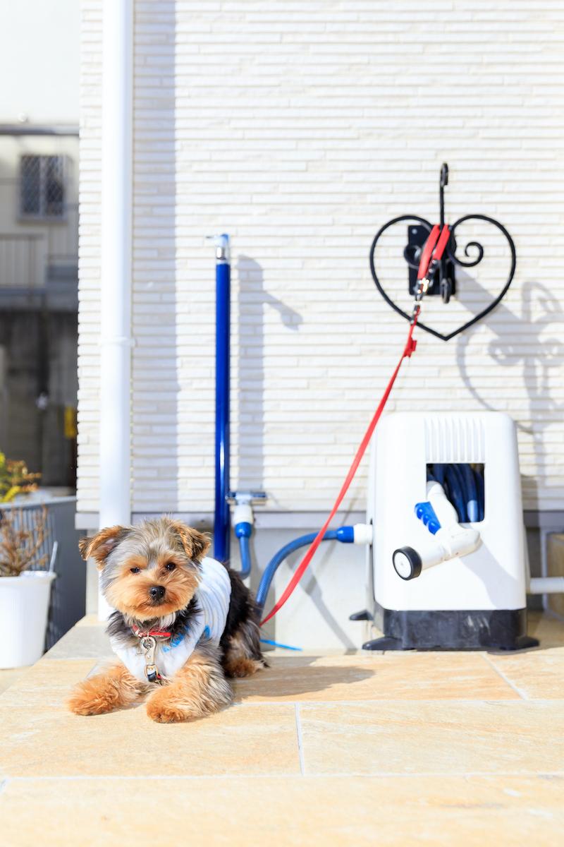 立水栓の横には、愛犬を繋ぐ事も出来るOnly One ホースハンガー スペード。